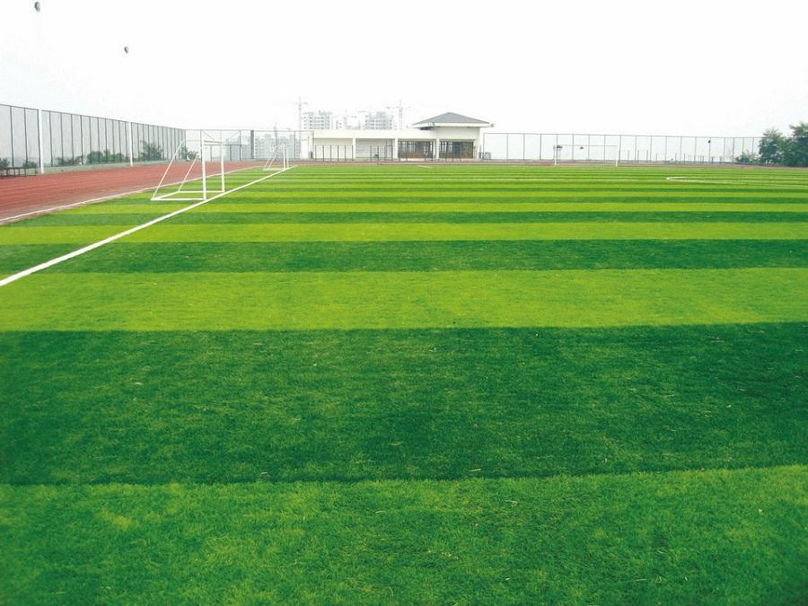 Thảm cỏ nhân tạo làm sân bóng đá