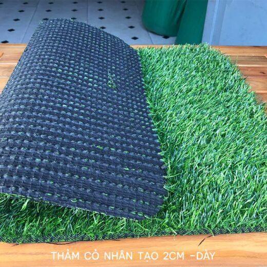 Thảm cỏ nhân tạo 2cm dày