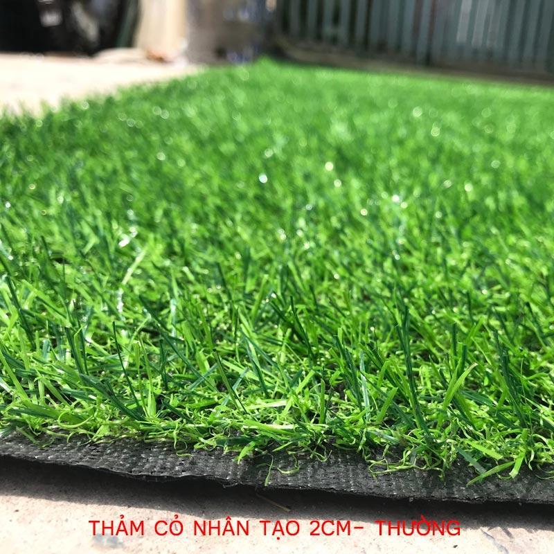 Thảm cỏ nhân tạo 2cm