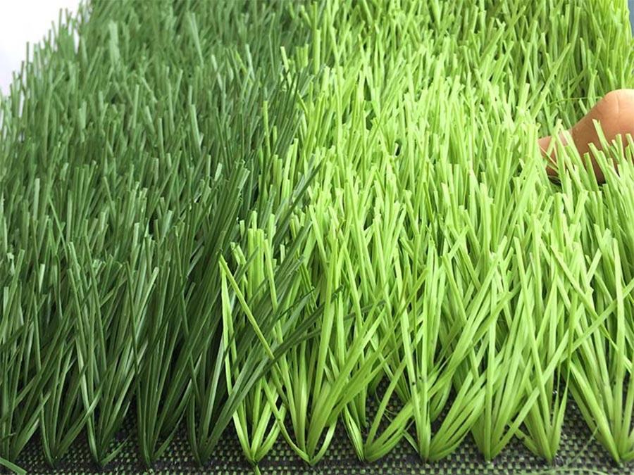 Thảm cỏ là bằng nhựa tổng hợp có độ bền cao