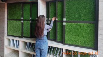 Thảm cỏ nhựa Tp HCM