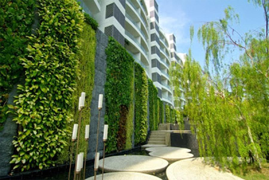 Trang trí tường cây xanh ngoài trời đẹp mắt