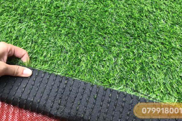 Thảm cỏ nhân tạo 2cm giá rẻ