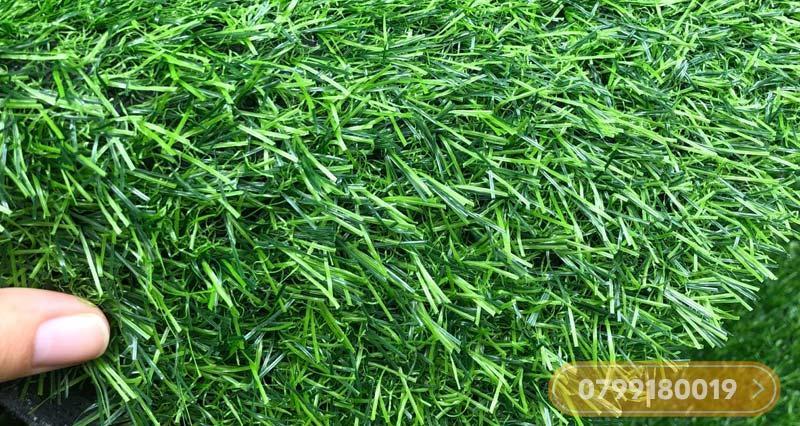 Thảm cỏ nhân tạo 3cm giá rẻ