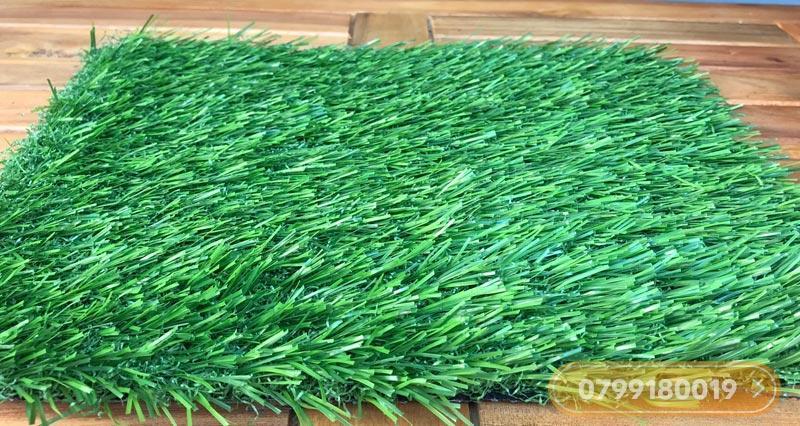 Thảm cỏ nhân tạo 3cm cao cấp